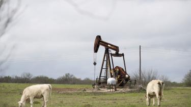 En olierig i Texas. På få år er USA gået fra at være verdens største olieimportør til at være verdens største olieproducent.