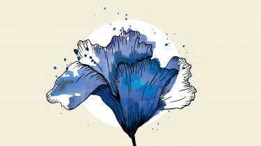 I de kommende mange uger tager Erik Skyum-Nielsen læserne med på en dannelsesrejse, hvor han udvælger og nærlæser de tyve bedste danske digte om naturen fra Kingo til i dag. Men først skal vi lige have på plads, hvad det er for en natur, digterne tænker på, når de i deres digte taler om naturen