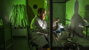 »Folk brokker sig ikke så meget, hvis man gør 300 kartofler syge, som hvis man gør 300 mennesker eller dyr syge, så det er noget lettere at lave forsøg på planter,« siger Alexander Byth Carstens, der forsker i mikrobiologi på Københavns Universitet.