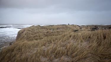 Der er ikke længere nogen geografisk flugt fra den danske sommers gråmelerede virkelighed: piskende regn mod en utæt sommerhusrude, oprørte have og, en sjælden gang imellem, en opklaring i vejret, sol på det vrede hav, skriver litteraturanmelder Mathilde Moestrup i denne klumme.