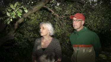 Information har bedt forfatterne C.Y. Frostholm og Christina Hesselholdt om over sommeren at anmelde den danske natur, men det viser sig ikke at være så let endda, fortæller de. Bare det at forsøge synliggør det moderne menneskes forhold til naturen: Den er et kunstværk, vi kan nyde, men aldrig helt blive en del af