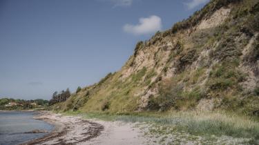 Den største sydvendte klint i Danmark blev fredet i 2004, men er ikke fredet af vind og regn og fjord