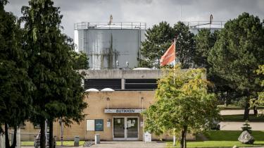62 ud af 900 medarbejdere på Danish Crowns slagteri i Ringsted er testet positive for corona.