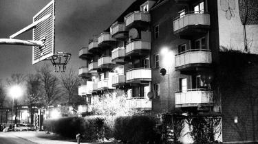 Boligselskabet Bo-Vita ønsker, at genhusningen af de beboere i Mjølnerparken, som bor i de karreer, som skal sælges, kan ske i alle selskabets bebyggelser rundt om i København. Mange af beboerne foretrækker imidlertid at blive genhuset i Mjølnerparken.
