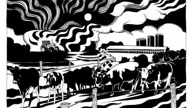 I 'Mamrelund. Dead man walking' bliver landmænd udskammet som klimasyndere, alt imens den moderigtige naturforherligelse tager til.