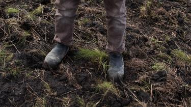 Ved at tage jorderne ud af drift og droppe dræningen vil markerne igen blive vandmættede, og det bremser udsivningen af drivhusgasser. IKlimarådets rapport fremgår det, aten udtagning af samtlige 170.000 hektar opdyrkede lavbundsjorde potentielt kan sikre en reduktion på op til 4,1 millioner ton CO2.