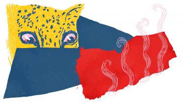 Puk Damsgård kan gå lige ind i folk med sine klipklappere, smutte gesvindt om bag niqabben og profitere af den åbenmundethed, der karakteriserer den mellemøstlige kvindeverden, skriver Suzanne Brøgger i sin læsning af hendes bud på den bedste 2020-bog, Puk Damsgårds personlige beretning 'Arabica'