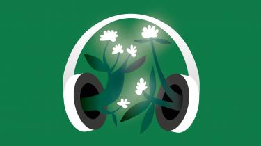 Pyrolyse spiller en central rolle i regeringens nye landbrugsudspil. I denne episode af Informations klimapodcast 'Den grønne løsning' forklarer Ulrik Birk Hansen fra DTU om teknologien og om, hvordan den kan bruges til at fjerne kulstof fra atmosfæren