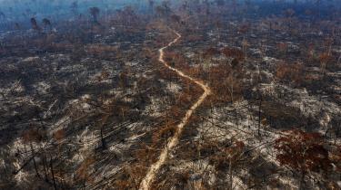 Brasiliens præsident, Jair Bolsonaro, er politisk gået bevidst efter at svække de myndigheder og institutioner, der har til opgave at beskytte Brasiliens regnskov og andre naturressourcer, og satellitbilleder viser, at skovrydningen i 2019-2020 nåede sit højeste niveau i 12 år.