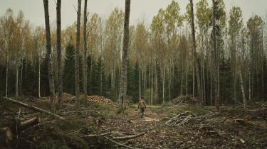 Historien om biomassen er en illustration af, hvor vanskelig og omfattende den grønne omstilling er, skriver Jørgen Steen Nielsen i denne serie, hvor Information stiller skarpt på biomassens fremtid i Danmark. På fotoet ses den estiske skovarbejder Mati Sepp.