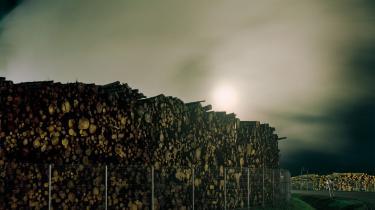 Klimaminister Dan Jørgensen er »bekymret« over Danmarks biomasseforbrug, der er tidoblet siden år 2000.