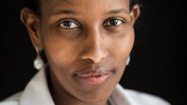 Ayaan Hirsi Alis mål med sin nye bog har været at indsamle så meget data som muligt, der kan bruges til at 'bevise', at muslimske mænd i Europa udgør en trussel for Europas kvinder. Problemet er, at de data, der præsenteres, er yderst selektivt valgt