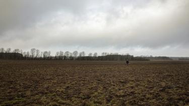 Udtagning af kulstofrige lavbundsjorde som denne mark på Vestsjælland er et af de vigtigste redskaber i klimaomstillingen af landbruget. Stopper man dræning og dyrkning af disse lavtliggende landbrugsjorder, vil de vende tilbage til naturtilstanden og blive vandmættede eller oversvømmede, og det kan effektivt bremse CO2-udsivning