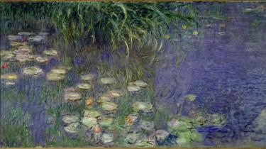 Egentlig er det jo blevet en kliché, Claude Monets 'Åkander'. Det første, man lærer i billedkunst, er, at Monet malede åkander, som tæt på ligner en grynet masse, men på afstand træder frem som former. Foto: Claude Monet: 'Le bassin aux nympheas avec saules, le matin aux saules' (1920/1926). Olie på kanvas.