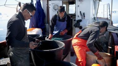 Fisk og skaldyr sikrer omkring 90 procent af Grønlands eksportindtægter og er dermed rygraden i grønlandsk økonomi. Derfor er fiskeriet et af valgkampens største og politisk farligste emner. Især kvotetildeling og forholdene for fiskerne indenskærs er sensibelt for mange landstingspolitikere.