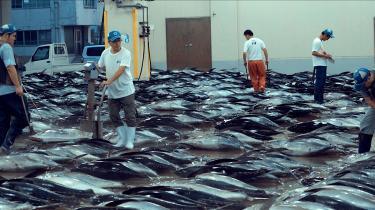 Seaspiracy kommer på halvanden time omkring en lang række argumenter for, hvorfor vi bør stoppe med at spise fisk.