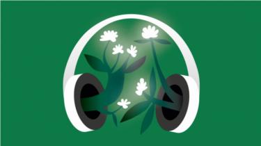 I sæsonens sidste afsnit af klimapodcasten fortæller Syddansk Universitets prorektor Sebastian Mernild om, hvorfor han mener, at universiteterne i deres forskning, uddannelse og drift bør være en aktiv spiller i den grønne omstilling