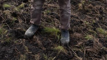 »Landbruget er en meget stor udleder i dag og vil stå for en voksende andel af de samlede udledninger i fremtiden, hvis vi ikke gør noget. Men vi venter stadig på at se noget fra regeringen om landbruget,« siger Peter Møllgaard, formand for Klimarådet.