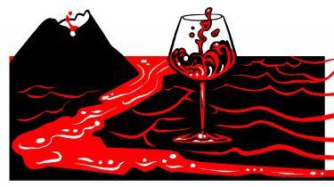 Nogle af Italiens ældste vinstokke befinder sig på Etna, hvor de trækker næring fra mineralerne i den vulkanske undergrund. Resultatet er overvældende og har på rekordtid gjort Siciliens vinscene til en af verdens mest beundrede