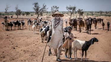 Sahel-regionen, der omfatter 12 afrikanske lande, er særligt sårbar over for klimaforandringer. Uregelmæssigt regnvejr og øget fordampning forårsager fejlslagen høst, og vegetationen til de græssende husdyr forsvinder, skriver klimaaktivistenFousseny Traore fra Mali.