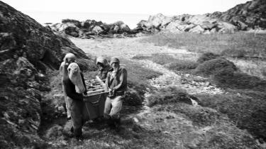 Efter 18 års skattejagt er det lykkedes at finde to kasser med mikrofilm, som de danske myndigheder i dybeste hemmelighed gemte i Grønland for 70 år siden. Som forventet indeholdt de en kopi af ting, vi havde i forvejen –alligevel var der en mening med det hele. Mikkel Vuorela opruller en fortælling om 'kassefeber', absurde ekspeditioner og en excentrisk mands plan for at redde nationen fra atomapokalypsen