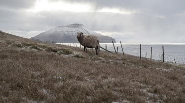 FOLK vil gerne benytte lejligheden til at ønske Færøerne tillykke med nationaldagen d. 29. juli i rigtig god tid.