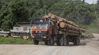 Ulovligt tømmer fra tropisk skov går ud over lokalbefolkning, klima og biodiversitet. Danske træimportører bliver ofte tildelt påbud ved tilsyn, fordi de ikke dokumenterer, at deres træ er importeret lovligt.