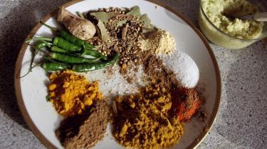 »Hvidløg, ingefær, korianderpulver, spidskommen, gurkemeje og chilipulver var basen for stort set alle de retter, vi fik hver dag. Lugten var udansk. Maden lugtede af karry og immigrantliv,« skriver Fahad Saeed.