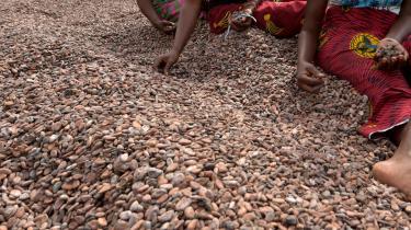 Chokoladelskere verden over skænker det næppe en tanke, men i de produktionskæder, der muliggør deres syndige fornøjelser, kan der meget vel indgå børneslave-arbejdskraft, pointerer proffesorer Joseph E. Stiglitz og Geoffrey Heal.