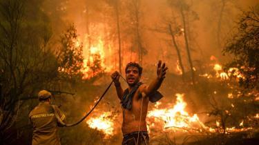 En lokal beboer kæmper mod de voldsomme brande, der hærger i Grækenland.