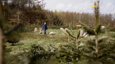Godsejer Johan Bernt Collet vil ikke betale for genopretningen af 11 gravhøje fra bronzealderen og heller ikke for en 6.000 år gammel langdysse fra stenalderen, som blev pløjet ned for at plante juletræer. Hans ihærdige anstrengelser for at undgå at betale fortsatte mandag i Østre Landsret
