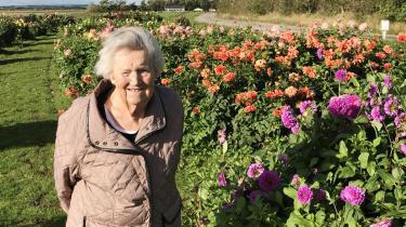 Hele sit liv var Asta Lund Pedersen en kvinde, der handlede og traf beslutninger i nuet og ikke bekymrede sig synderligt for fremtiden.