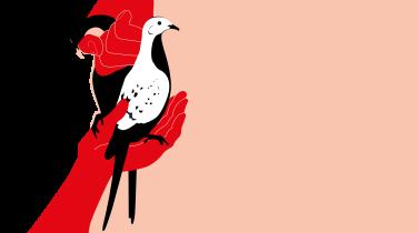 Videnskabsforfatteren Nathaniel Rich fortæller i 'Second Nature' om den verden, som træder frem i skyggen af klimaforandringer og artsuddøen. Målet er at skrive historier, der virker som modgift mod den forestillingskrise, der har ramt vores kultur, når det gælder klimaet – og som mange grønne aktivister også lider under
