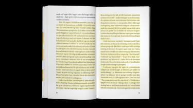 Det erdenne passage fraside 30-35 i Marianne Stidsens bog 'Den Nordiske MeToo-revolution 2018 - og dens omkostninger', der udkom på forlaget U Press i 2019, som er næsten enslydende med artiklen »Nultolerencepolitikken« skrevet at Julie Moestrup og Søren K. Villemoes på forsiden af Weekendavisen d. 14 december 2018.