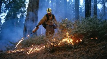 I dette øjeblik brænder ukontrollerede skovbrande verden over og intet tyder på, at det vil ændre sig inden for den nærmeste fremtid