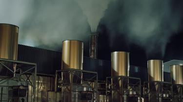 Kampen for en grønnere verden er med til at fælde verdens skove. Over halvdelen af Danmark og EU's rene energi kommer fra afbrænding af træ. Fra en tidligere dansk topembedsmand i Venedig over Estland til Vestjylland og en jolle i Øresund har vi fulgt sporet af savsmuld for at forstå konsekvenserne – og hvordan det kom så vidt