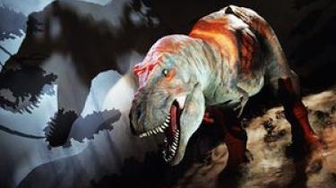 Ny forskning peger på, atTyrannosaurus rex ikke blot har brugt sin følsomme snude til at bygge rede og samle sine unger op fra jorden. I intime stunder har dinosaurerne muligvis også gnedet snudernesammen som forspil.