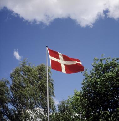 Det danske flag har på et tiår mistet sin værdi. Man har trampet på et ældgammelt symbol for frihed og storsind ved at gøre Danmark og Dannebrog til synonym med holdninger, der hører hjemme helt ude til højre for Le Pen, mener dagens kronikør.