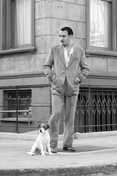 Bedsteven. Hunden, der spilles af den veltrænede jack russell terrier Uggie, er et vigtigt plotmæssigt værktøj og et følelsesmæssigt fikspunkt i 'The Artist'.