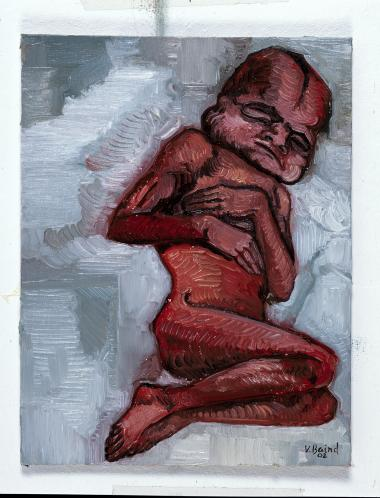 Vanessa Baird har malet billederne i Knausgårds nye bog, som er første bind ud af fire i en encyklopædi til et ufødt barn. Illustration fra bogen