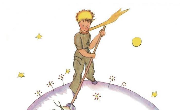 citater den lille prins Den Lille Prins' beriger os stadig med sin livsvisdom   Information citater den lille prins