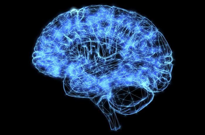 59c85c98d39 Hjernekonservering er tættere på virkeliggørelse – men ønsker vi ...