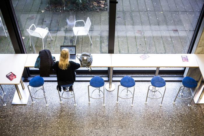 hvilken procent af universitetsstuderende tilslutter sig internet dating sikkerhedstips
