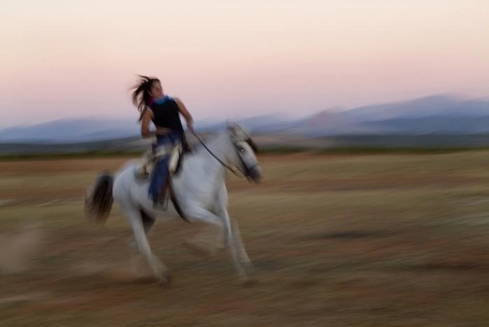 På prærien. Dy Plambeck har med -Texas- Rose- begået en genistreg af en familiesaga, hvor jeg-fortælleren ganske passende slutter af med at rejse til Colorado for at lære sig ridekunsten til perfektion.