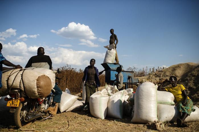 I 2004 udviklede Ugandas regering de første standarder for økologi, som siden med støtte fra FN er blevet integreret i et sæt af regionale økologiske standarder for hele Østafrika.