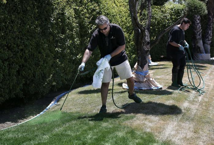 45 grader er der målt i Californien. Tørken fortsætter, men mange californiske byboer har ikke indset, hvor slemt det er. Flere steder er virksomheder og private husejere begyndt at male deres tørre græsplæner, så de ser grønne ud. Malingen holder i 90 dage og kan ikke vaskes af.