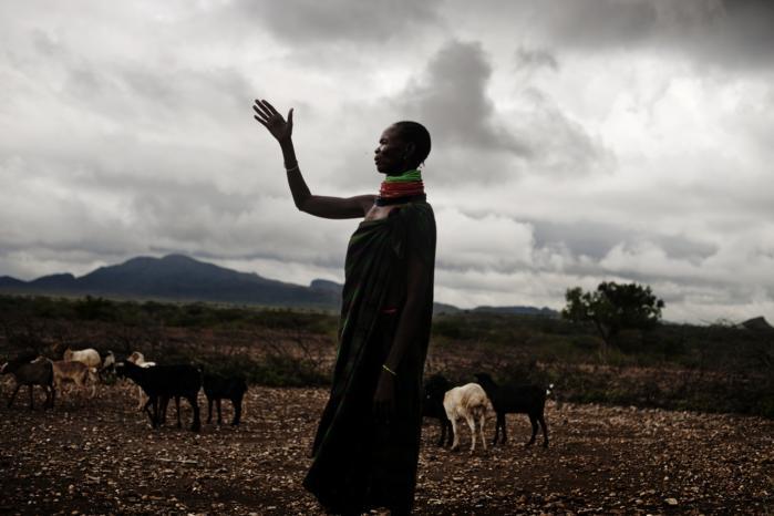 Hyrdefolket ved Lake Turkana har vandret i området med deres dyr i umindelige tider. Nu frygter de, hvad en stor vindmøllepark bestyret af udenlandske investorer vil betyde for deres livsform. Via en retssag vil de have kontrollen med området tilbage.