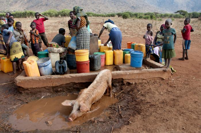 Regeringens såkaldte udenrigsgransker, Peter Taksøe-Jensen, har bebudet en mere 'mere interessebaseret udviklingspolitik', hvilket ifølge ekspert og ngo'er betyder, at donordarlings som eksempelvis Tanzania, kan se frem til mindre bistand.