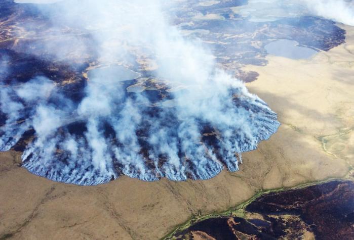 Skovbrand i Alaskas Bogus Creek i juni sidste år. Alaska er stærkt påvirket af klimaforandringerne - et af de problemer, der kan få mennesker til at føle sig afmægtige. Det påpeger otte forskere i en ny bog.