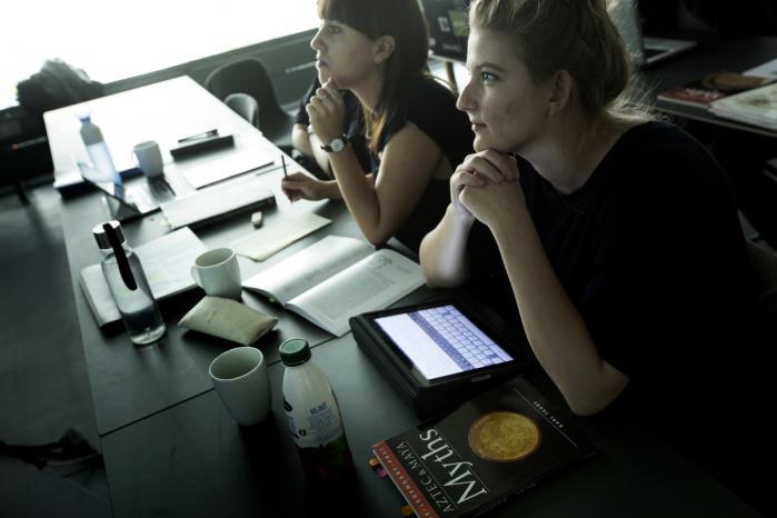 Ifølge prorektor ved Københavns Universitet Lykke Friis skal sprog ikke kun skal være befordrende for det merkantile, men også formidle noget så grundlæggende som kultur og dannelse.